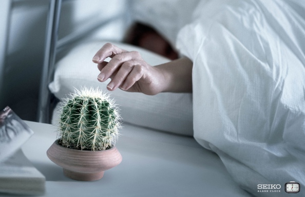 Kesako Seiko Cactus
