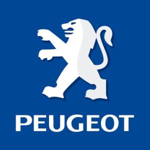Peugeot : 176 millions d'euros